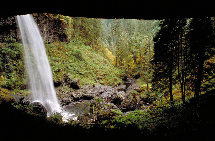 North Falls. Oregon USA Silver Falls State Park.