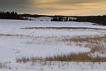 Grassland in winter, Riding Mountain National Park, Manitoba, Canada