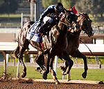 ARCADIA, CA: October 05: #2 Omaha Beach (inside) sticks his nose out in front of #3 Shancelot to win the Grade I Santa Anita Sprint Championship Stakes at Santa Anita Park on October 05, 2019 in Arcadia, California (Photo by Chris Crestik/Eclipse Sportswire)