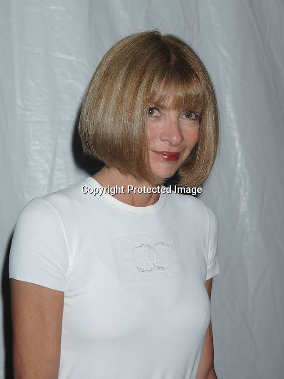 "Anna Wintour..at The Fresh Air Fund ""Salute to American Heroes"" Spring Gala on June 1, 2006 at Tavern on the Green...Robin Platzer, Twin Images"