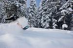 Collage - Powder Snowboarder