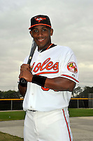 Feb 27, 2010; Tampa, FL, USA; Baltimore Orioles  infielder Miguel Abreu (80) during  photoday at Ed Smith Stadium. Mandatory Credit: Tomasso De Rosa