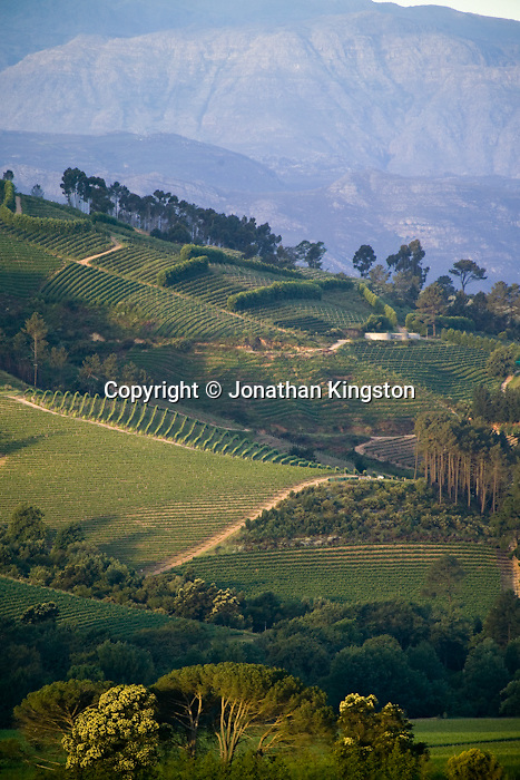 A view of the Banhoek Valley from Clouds Estate, South Africa.  Banhoek valley is located between the towns of Stellenbosch and Franschhoek in the Western Cape province and is world renown for its wines.