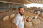 Boaz Melet, a settler in the unauthorized Israeli outpost of Adei-Ad, West Bank, at his sheep pen.