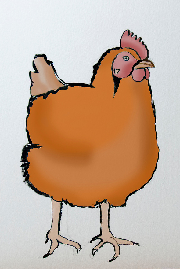 .illustratie van kippen..(c)renee teunis