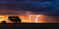 Thunder storm with lightning bolts at sunset over Kalahari pan