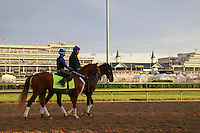 May 1, 2014: Tapiture prepares for the Kentucky Derby at Churchill Downs in Louisville, KY. Zoe Metz/ESW/CSM