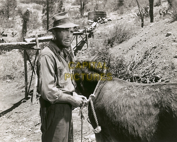 HUMPHREY BOGART  .in TheTreasure of the Sierra Madre.*Filmstill - Editorial Use Only*.CAP/PLF.Supplied by Capital Pictures.