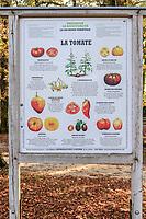 France, Indre-et-Loire (37), Montlouis-sur-Loire, jardins du château de la Bourdaisière, le potager conservatoire de la Tomate, panneau Deyrolle sur la tomate