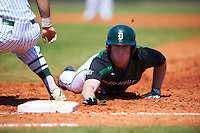 Dartmouth Big Green right fielder Kyle Holbrook (9) dives back to first base on a pick off attempt during a game against the Eastern Michigan Eagles on February 25, 2017 at North Charlotte Regional Park in Port Charlotte, Florida.  Dartmouth defeated Eastern Michigan 8-4.  (Mike Janes/Four Seam Images)