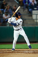 Tri-City Dust Devils Sean Guilbe (1) at bat during a Northwest League game against the Vancouver Canadians at Gesa Stadium on August 21, 2019 in Pasco, Washington. Vancouver defeated Tri-City 1-0. (Zachary Lucy/Four Seam Images)