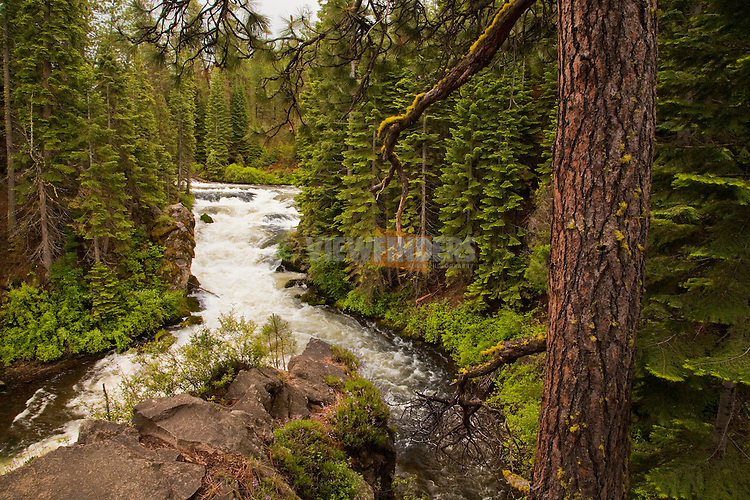 Benham Falls on Deschutes River near Bend, Oregon