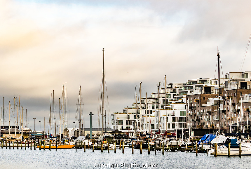 Sail boats at anchor with modern architecture in the background at Aarhus Ø in Denmark