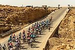 The peloton in action during Stage 4 of the Saudi Tour 2020 running 137km from Wadi Namar Park to Al Muzahimiyah King Saud University, Saudi Arabia. 7th February 2020. <br /> Picture: ASO/Kåre Dehlie Thorstad | Cyclefile<br /> All photos usage must carry mandatory copyright credit (© Cyclefile | ASO/Kåre Dehlie Thorstad)