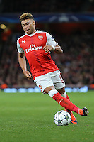 Alex Oxlade-Chamberlain of Arsenal during the UEFA Champions League match between Arsenal and PFC Ludogorets Razgrad at the Emirates Stadium, London, England on 19 October 2016. Photo by David Horn / PRiME Media Images.