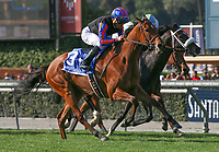 ARCADIA, CA April 7: Beau Recall (IRE) and Joel Rosario close from way back in the Royal Heroine (Grade II) on April 7 at Santa Anita Park in Arcadia, CA (Photo by Chris Crestik/ Eclipse Sportswire/ Getty Images)