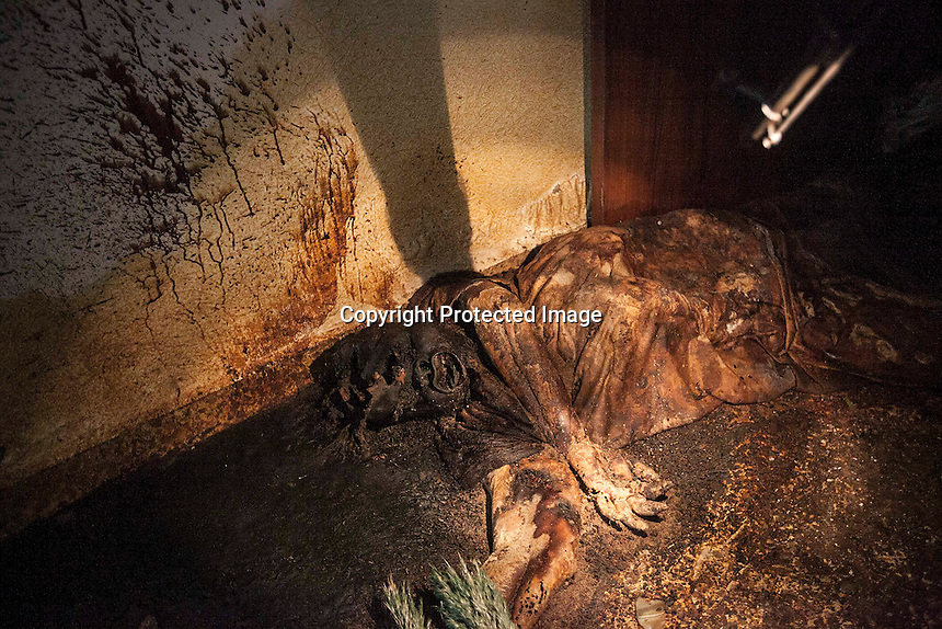 In this Monday, Dec. 10, 2012 photo, a woman's dead body allegedly executed and abandoned lies inside a residential house after it was discovered by Syrian rebels when they carried out a raid in the battlefield of Aleppo, Syria. (AP Photo/Narciso Contreras)