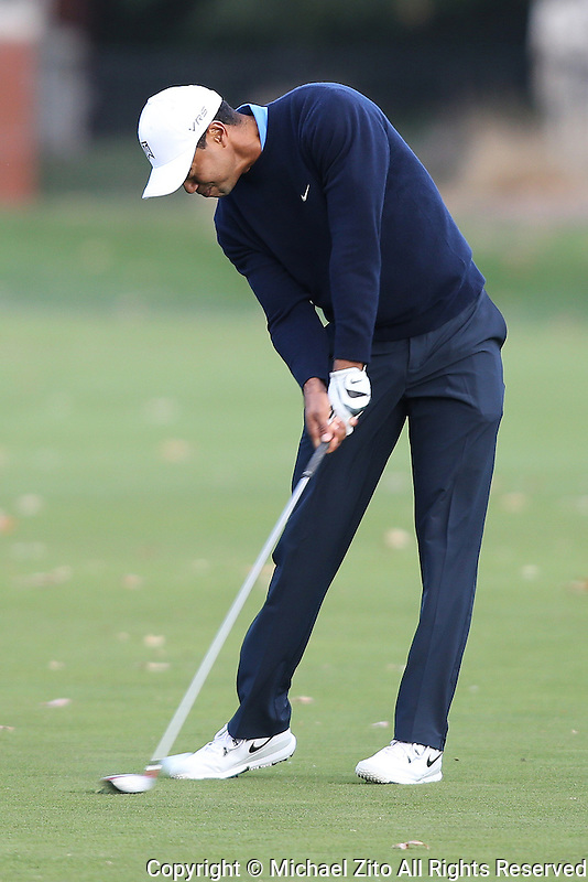 12/05/13 Thousand Oaks, CA:  Tiger Woods during the first round of the 2013 Northwestern Mutual World Challenge, benefitting the Tiger Woods Foundation.