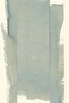 Reworking of Failed Moonflower Cyanotype Prints