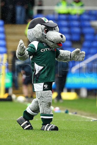 26.02.2011 London Irish Mascot before game Aviva Premiership Rugby from the Madejski Stadium. London Irish v Harlequins.