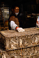 """Cages of quails at a bird and poultry marker in Guangzhou, China in this file photo. China's wild animal markets, where live wild animals and reared animals are sold are the source of many viruses that mutate as they """"jump"""" from animals to humans. The coronavirus COVID-19 is thought to have originated in an animal market in China. <br /> By Sinopix Photo Agency"""