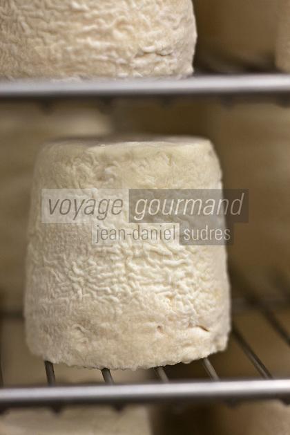 Europe/France/Poitou-Charentes/79/Deux-Sèvres/Villemain: Fromagerie à la ferme de Paul Gorgelet: Le Petit Boisselage -AOC Chabichou  du Poitou dans la cave d'Affinage