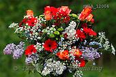 Carl, FLOWERS, photos, SWLA12004,#f# Blumen, Natur, flores, naturaleza