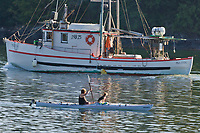 Kayaker and dog pass by the MV Sultan, in Sitka Sound, southeast, Alaska.