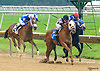 Eightyeightmph winning at Delaware Park on 6/5/2017