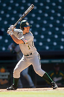 Baylor Bears shortstop Brett Doe #1 at bat during the NCAA baseball game against the California Golden Bears on March 1st, 2013 at Minute Maid Park in Houston, Texas. Baylor defeated Cal 9-0. (Andrew Woolley/Four Seam Images).