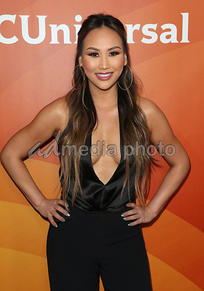 20 March 2017 - Beverly Hills California - Dorothy Wang. 2017 NBCUniversal Summer Press Day held at The Beverly Hilton Hotel. Photo Credit: AdMedia