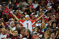Dec 6, 2009; Glendale, AZ, USA; An Arizona Cardinals fan waves flags in the crowd against the Minnesota Vikings at University of Phoenix Stadium. The Cardinals defeated the Vikings 30-17. Mandatory Credit: Mark J. Rebilas-