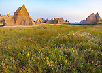 Badlands National Park, South Dakota:  Morning light on badland formations and grasslands