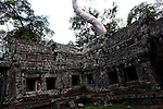 The ruins of Ta Prohm at Angkor Thom, Cambodia. June 7, 2013.