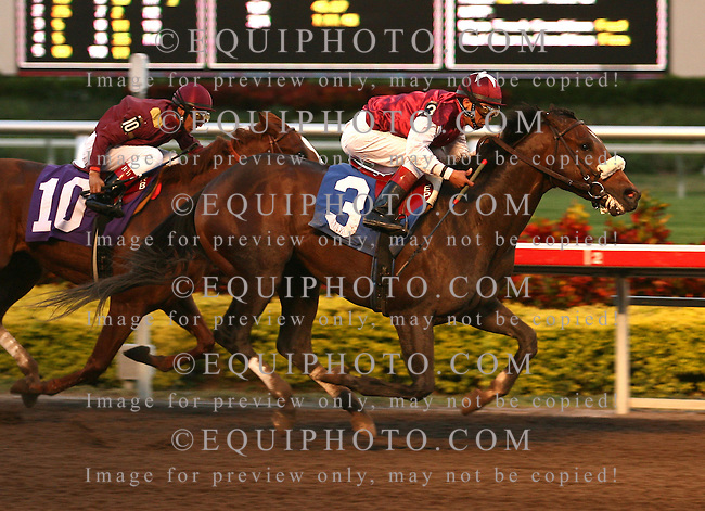 Mandurah #3 with Edgar Prado riding, defeated Red Missile and Rafael Bejarano in the 10th race at Gulfstream Park, Maiden Special Weight for three year olds, on 1/13/07. Photo By Bill Denver/EQUI-PHOTO
