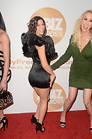 LOS ANGELES - JAN 17:  Alexis Fawx at the 2019 XBIZ Awards at the Westin Bonaventure Hotel on January 17, 2019 in Los Angeles, CA
