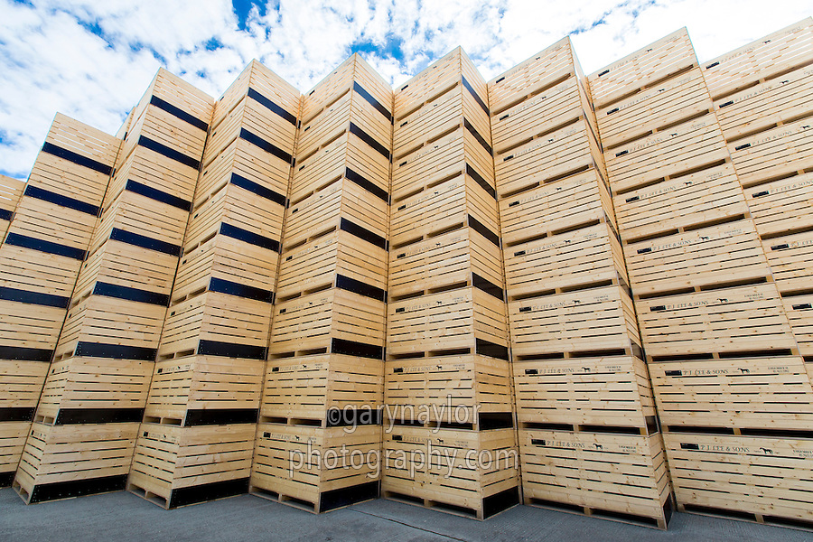 Empty potato boxes stacked ready to be filled - Cambridgeshire, September