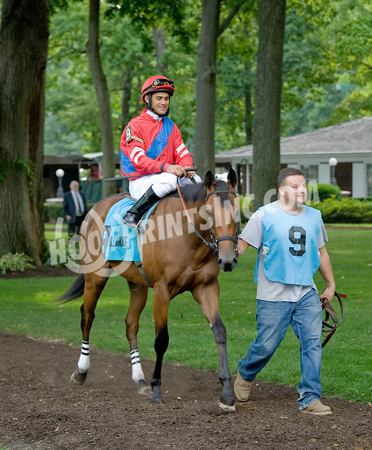 Cousin Brucy before The Par Four Stakes at Delaware Park on 7/12/12