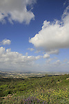 Israel, Lower Galilee, a view southwest from Shkhanya forest
