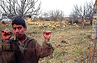 A shepherd boy standing in front of his farm on the way to the strategic town of Uri. Kashmir valley, India