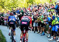 Picture by Alex Broadway/SWpix.com - 30/09/2018 - Cycling 2018 Road Cycling World Championships Innsbruck-Tirol, Austria - Men's Elite Road Race - Vincenzo Nibali OGL Michael Gogl