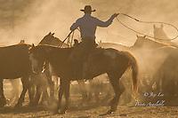 Sunrise coyboy roping a horse