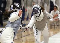 Fencing 2018