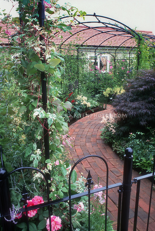 Circular arch trellis pathway, brick walkway, iron wrought fence, vines, lush entrance garden with house, climbing vines, roses, astilbe, Japanese maple tree, lush flowers and foliage, textures