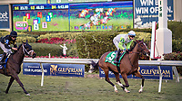 HALLANDALE BEACH, FL - JAN 06: Thewayiam #5 with Jose L. Ortiz in the irons crosses the finish line to win The $100,000 Ginger Brew Stakes for trainer H. Graham Motion at Gulfstream Park on January 6, 2018 in Hallandale Beach, Florida. (Photo by Bob Aaron/Eclipse Sportswire/Getty Images)