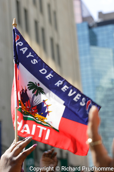 A small handheld flag for Haiti