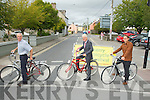 ZEBRA: Crossing the Zebra Linen at the Kerry County Library were Tommy O'Connor (Kerry County Librian), Neils Christen Pultz (Danish Amabassore to Ire) and Keth Phelan).