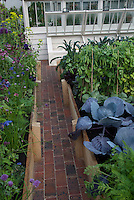 Cold Frame in Vegetable Garden