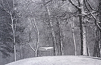 Park bench overlooking Lake Huron at Canatara Park.