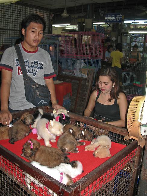 Pet store in Chat a Chuk Market. Bangkok, Thailand